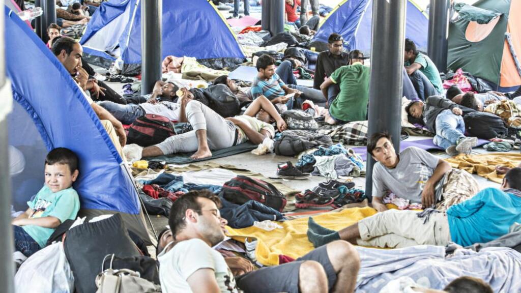 BARN ELLER VOKSNE? Flyktninger har samlet seg på jernbanestasjonen i Budapest før den ble stengt, i håp om å få et tog nordover i Europa. Hvor mange av asylsøkerne lyver på alderen? Foto: Hans Arne Vedlog  / Dagbladet