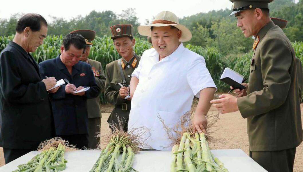 MESSIAS? Nord-Koreas diktator Kim Jong-un inspiserer avlinga og bestyrer tida.  AFP / NTB Scanpix