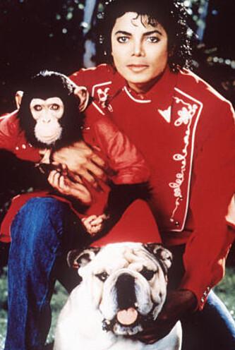 KJÆLEDYR: Her er Michael avbildet med sin sjimpanse Bubbles og en bulldog. Foto: NTB scanpix <div><br></div>
