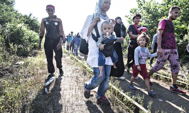 d4230c47 KOMMET TIL EUROPA: I fjor sommer kom over en million flyktninger over  Middelhavet og Europa