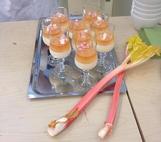 VINTER-RABARBRA: Prøveproduksjon av rabarbra om vinteren er akkurat satt i gang, planten blir ekstra rød og søt. Her med Madame Køhlers fløtepudding. Foto: KØHLER-PAVILJONGEN
