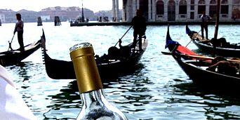 image: Vin som passer særdeles godt til seine og lune sommerkvelder