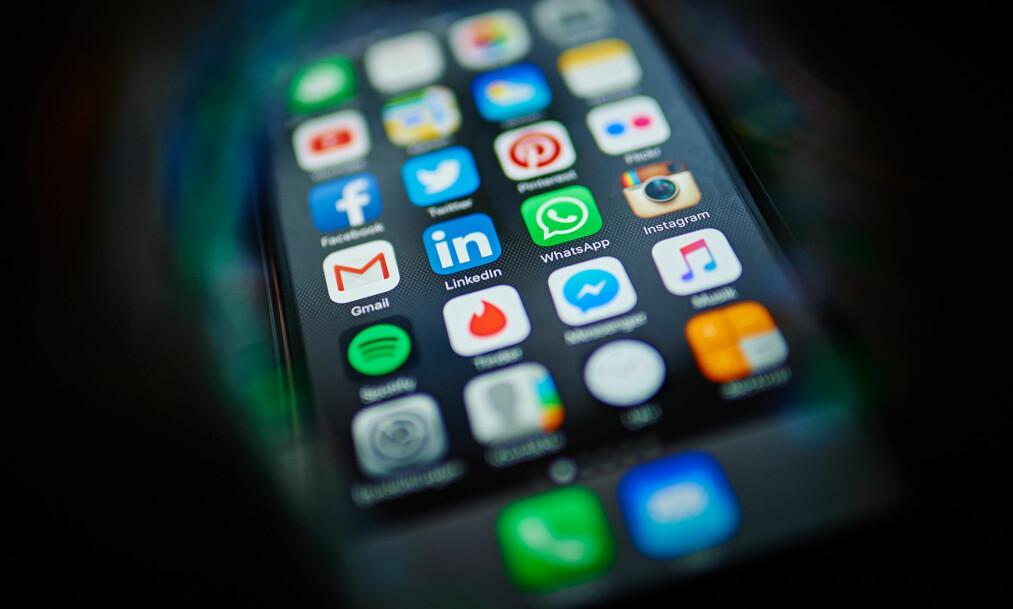<strong>ENDRET:</strong> Sosiale medier har endret hele supporteropplevelsen. Foto: picture alliance /Robert Schlesinger