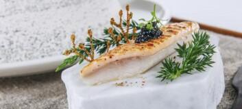 Kokke-EM i gang: lå søvnløs på grunn av fisken