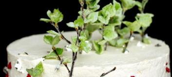 En saftig bløtkake fylt med masse krem og friske bær er en sikker vinner 17. mai
