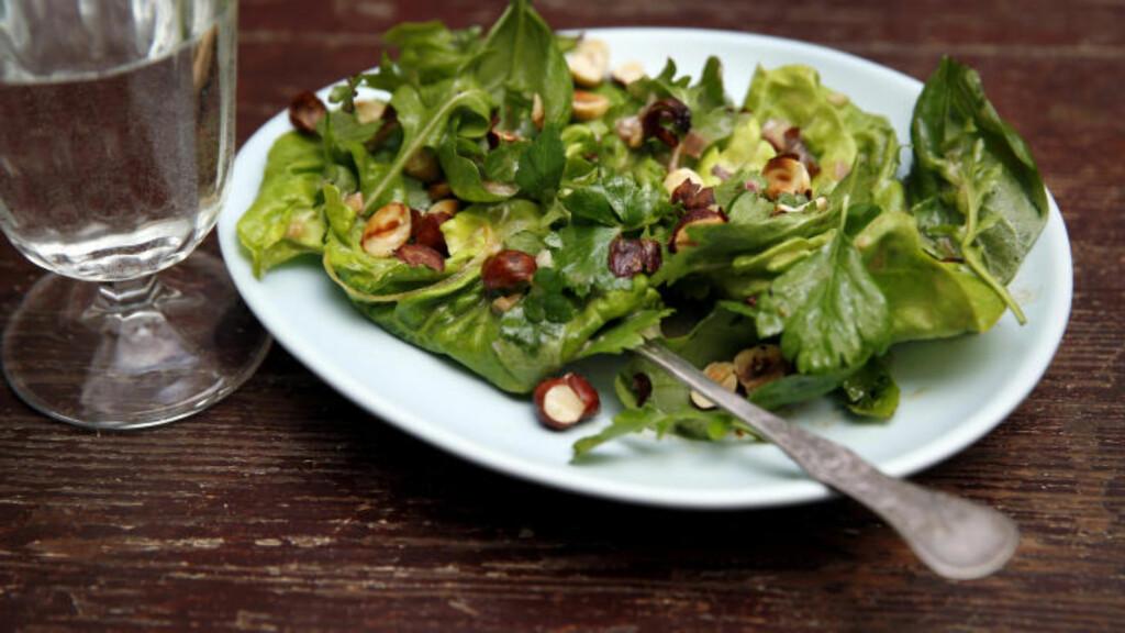 SOMMER: Den beste salaten til biff og annen grillmat lager du med en blanding av skjøre og milde blader fra hodesalat, og noen aromatiske og litt bitre blader av persille, babyspinat og basilikum. Foto: METTE RANDEM