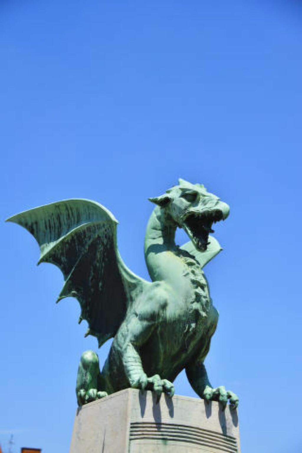 DRAGEBYEN: Dette monsteret er Ljubljanas symbol og byens mest gjenkjennelige innbygger. Den mest kjente av dragene holder til på Dragebrua, som en gang i tiden var byens inngangsport. Foto: TORILD MOLAND