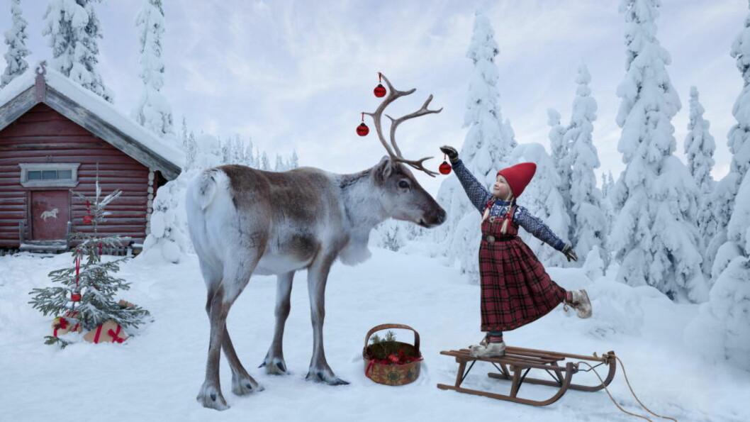 Rein lykke: Per Breiehagen fra Ål i Hallingdal og kona Lori Evert har laget bildebøker der de fotomonterer datteren Anja inn sammen med ville dyr. Foto/fotomontasje: Per Breiehagen