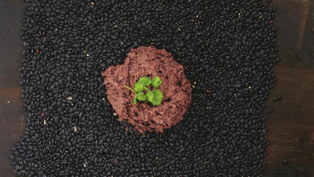 TILBEHØR: Bønnedip kan brukes som tilbehør til mange middagsretter - eller som dip til grønnsaker og annen snacks. Foto: SYNØVE DREYER