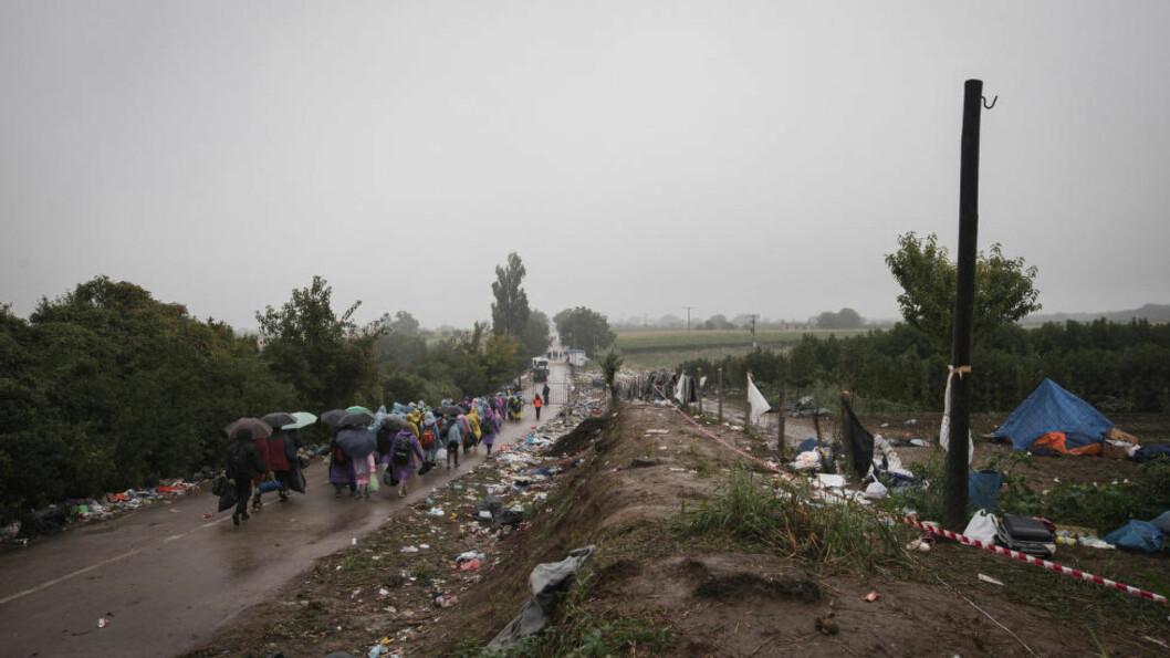 <strong>TRANSITTLAND:</strong> Her krysser flyktninger grensa mellom Serbia og Kroatia. I dag registrerte landet 10 000 flyktninger og migranter. Foto: Sipa / NTB scanpix