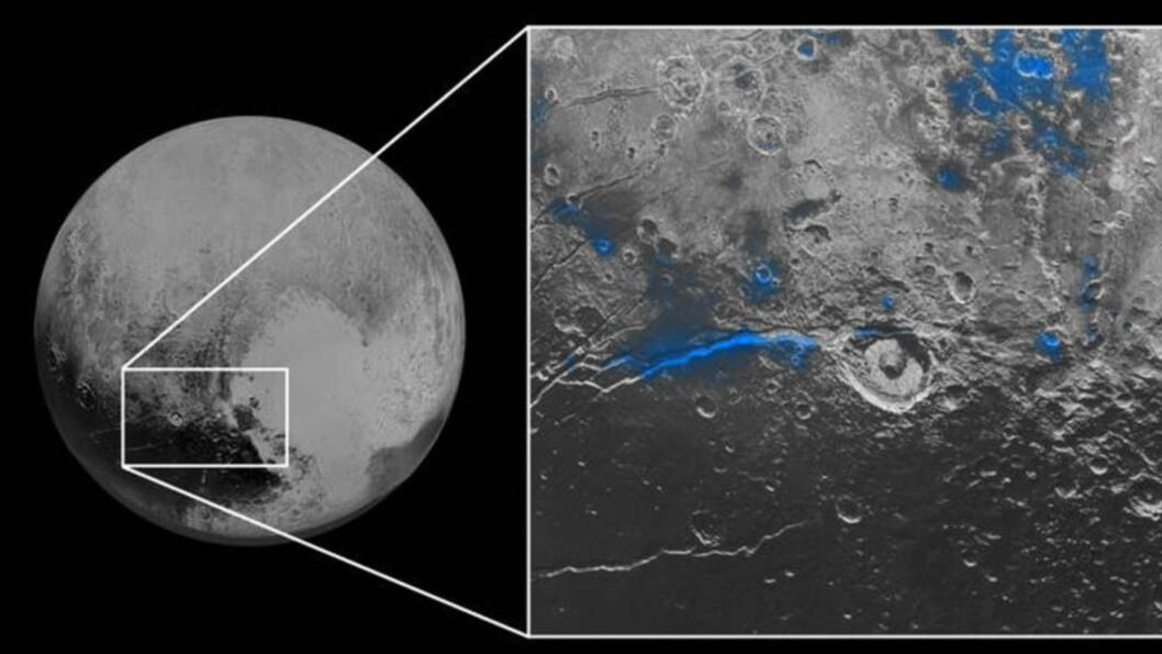 TATT FRA 12 500 KILOMETERS AVSTAND:  Blå farge markerer vannis innenfor et 450 kilometer langt belte på overflaten av dvergplaneten Pluto. Oppsiktsvekkende bilder, sier eksperter.  Foto: NASA/JHUAPL/SwRI.