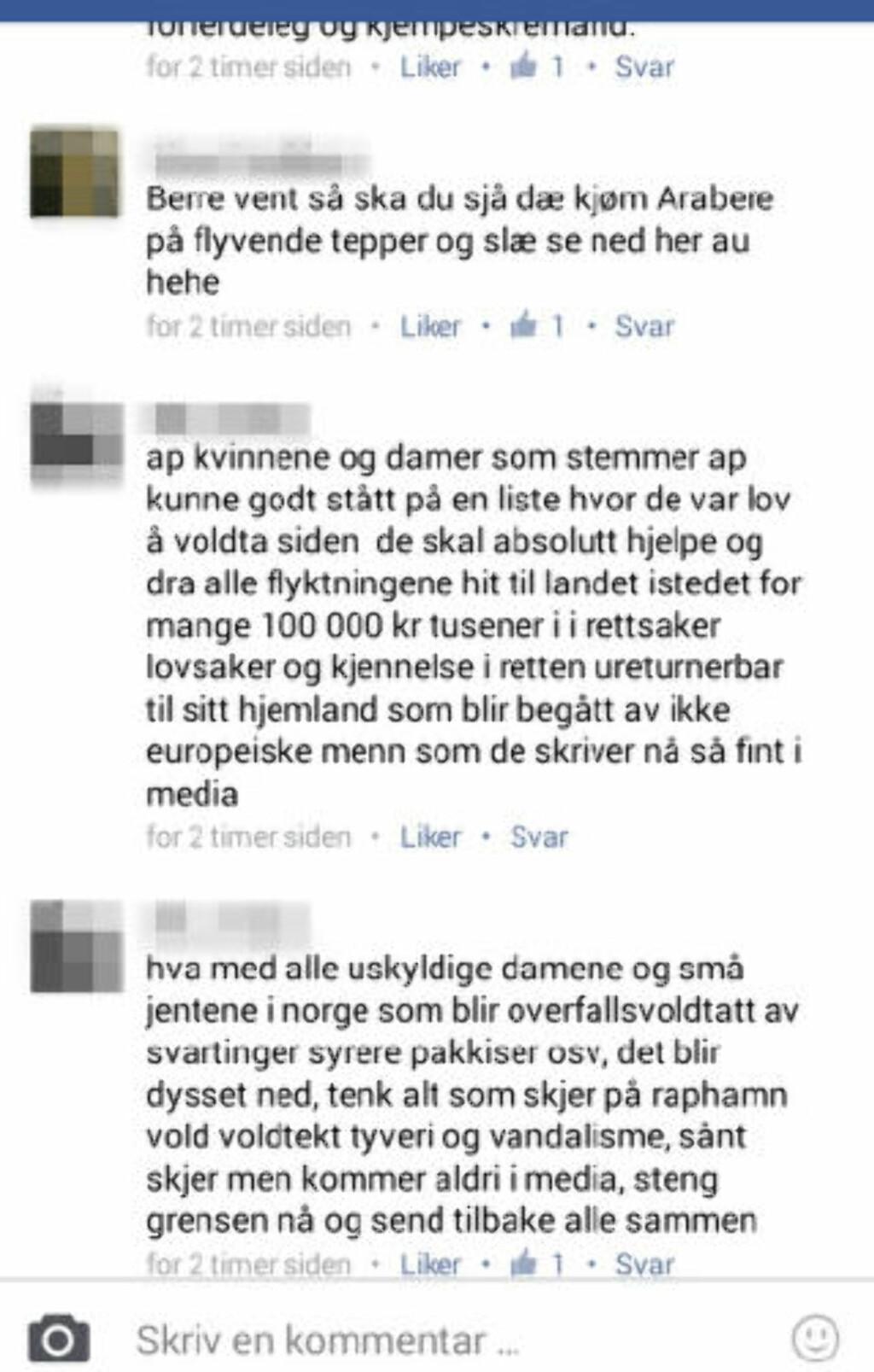 STERKE UTFALL: På åpne Facebook-profiler kommer gudbrandsdøler med sterke utfall mot flyktninger og Ap-kvinner. Den ene av disse meldingene er nå meldt til poiltiet. Faksimile: Facebook