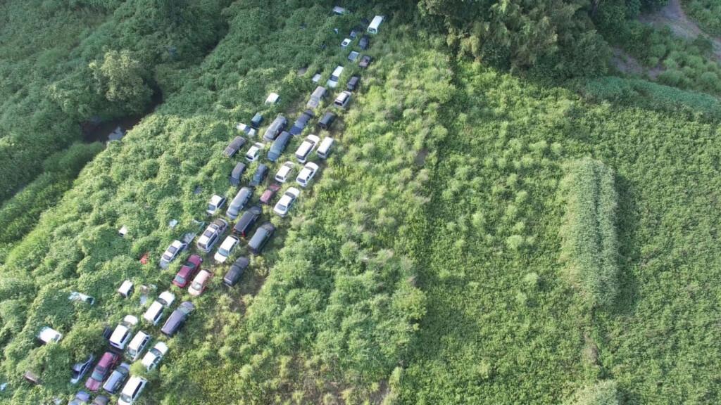 NATUR:  Naturen har overtatt området rundt Fukushima, hvor beboerne innenfor en radius på 20 kilometer er evakuert. Foto: Arkadiusz Podniesinski