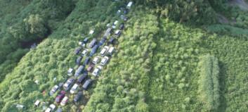 Naturen tar tilbake Fukushima