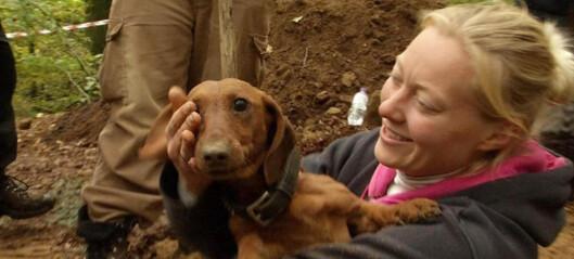 Hunden Fighter ble levende begravd i fire døgn - her blir han funnet i live