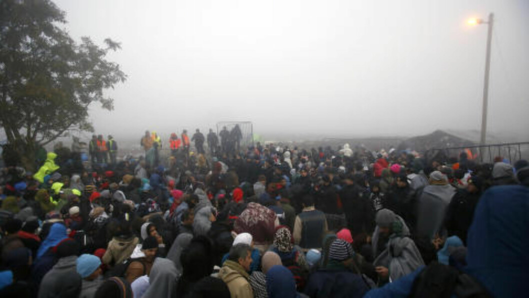 STRØMMEN FORTSETTER:  Flyktninger på serbisk side blir forsøkt stoppet av kroatisk grensepoliti torsdag morgen ved grenselandsbyen Babska. Foto: Darko Vojinovic, AP/NTB Scanpix.