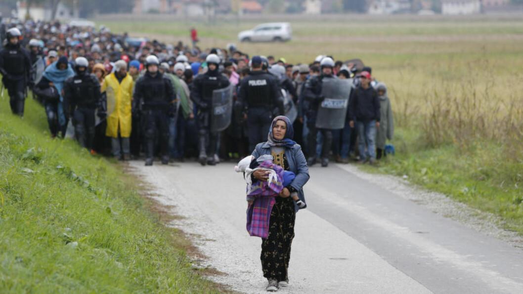 TIL FOTS MOT ØSTERRIKE - OG TYSKLAND:  Slovensk politi har gitt opp å stanse flyktningestrømmen fra nabolanadet Kroatia, og forsøker her isteden å organisere den vandrende køen av flyktninger inne på slovensk grunn i Rigonce. Den syriske kvinnen Fatima og hennes barn går foran torsdag formiddag på veien mot Østerrike i neste omgang. Foto: Srdjan Zivulovic, Reuters/NTB Scanpix.