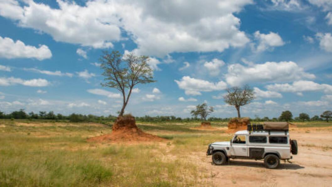 JUBILEUM:  Botswana feirer 50 års uavhengighet i 2016 og har utviklet seg til å bli et av Afrikas mest stabile land, skriver Lonely Planet. Foto: EDWIN REMSBERG / ZUMA PRESS / NTB SCANPIX