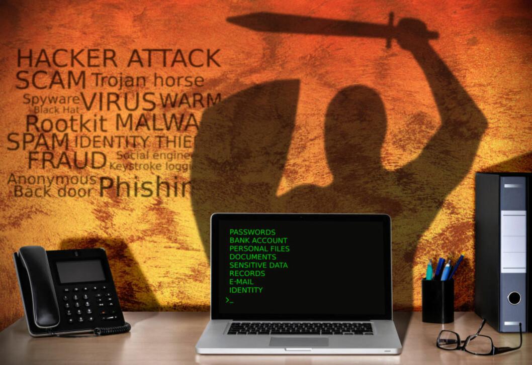 <strong>ANGRIPES DAGLIG:</strong> Nordmenn utsettes daglig for angrep fra datakriminelle. I denne saken forklarer ekspertene hvordan angrepene foregår, og hvordan du best kan beskytte deg. Illustrasjon: NTB Scanpix