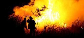 Indonesias regnskog brenner ned - Norge kutter støtte