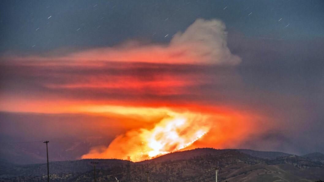 <strong>CALIFORNIA I BRANN:</strong> Ekstremtørken i California har ført til en rekke alvorlige branner delstaten over. Onsdag ettermiddag brøt det ut en brann som har gjort at 500 mennesker er drevet på flukt. Foto: NTB Scanpix
