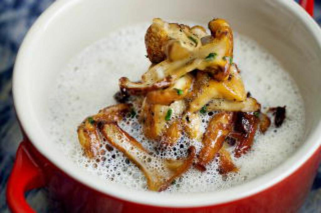 SOPPSUPPE: Kok suppe på de styggeste, og pynt med de peneste kantarellene. Foto: METTE MØLLER