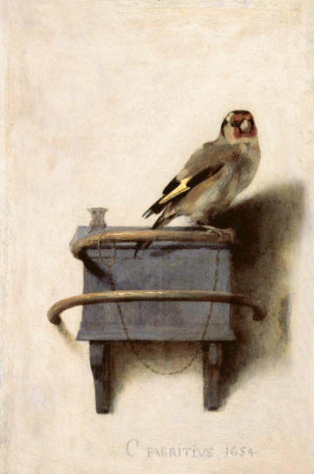 BLE BOK: Carel Fabritius malleri Het Puttertje, malt i cirka 1654 ble til krimromanen The Goldfinch i 2014. Foto: MAURITSHUIS