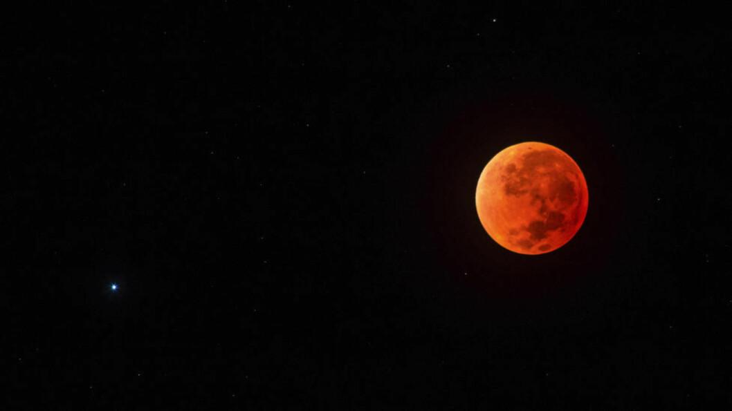 <strong> FULLMÅNEN BLIR RØD:</strong> Det er 33 år siden fullmånen var på sitt nærmeste og lyseste og totalt formørket på samme dag. Foto: Scanpix