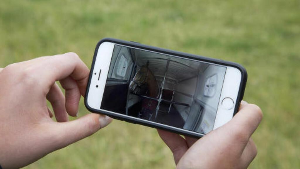 APP PÅ TELEFONEN: Med hjelp av en applikasjon på telefonen kan du følge med på lasten, selv når du ikke er ved tilhengeren.  Foto: LAND ROVER