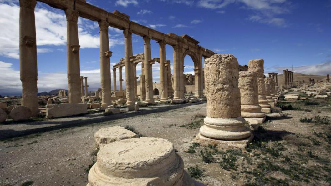 <strong>OLDTIDSBY:</strong> IS har stadig rykket nærmere Palmyra i Syria, men syriske styrker hevder de i dag beseiret opprørerne. Foto: AFP PHOTO/JOSEPH EID/NTB scanpix