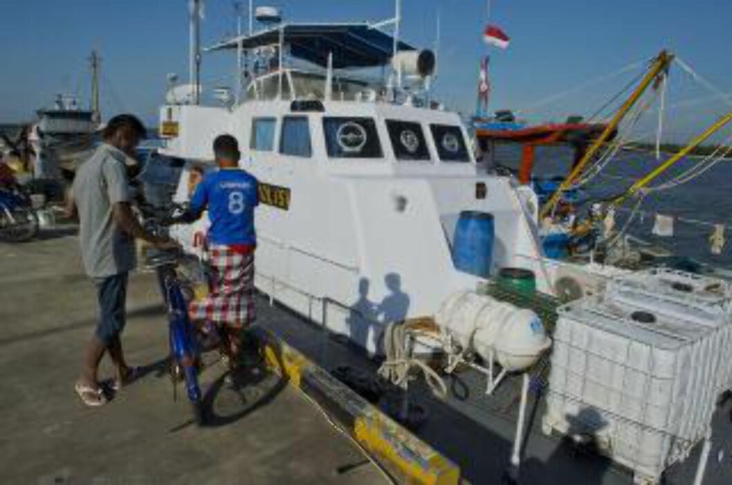<strong>FLERE REDDET:</strong> Indonesiske fiskere har hjulpet over 100 båtflyktninger i land, mens rundt 400 fortsatt befinner seg utenfor kysten av Aceh-provinsen. Foto: AFP PHOTO / ROMEO GACAD