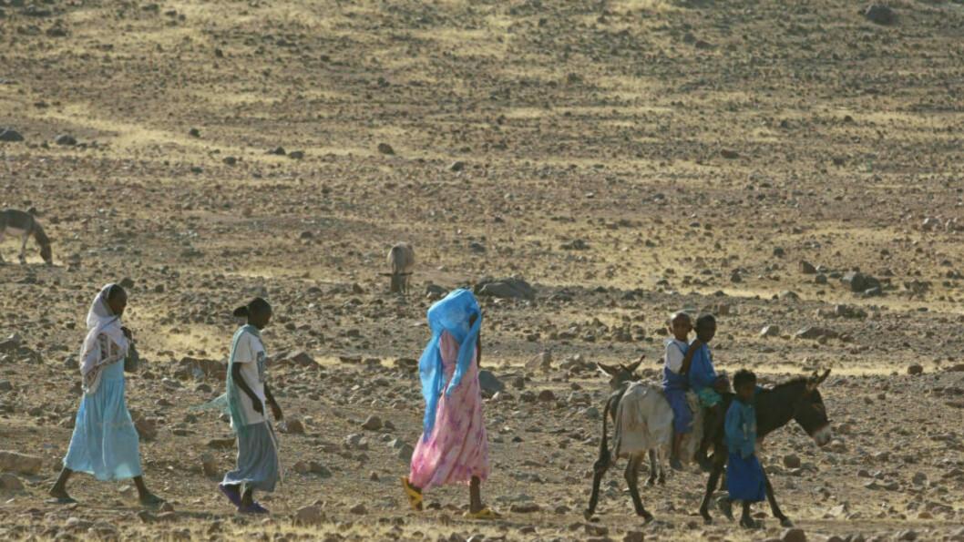 <strong>LUKKET:</strong> Dette bildet fra 2004 av en familie som går i Eritreas ørken, var det nyeste byråbildet vi kunne finne fra det lukkede landet. Grunnlaget for at asylsøkere i landet får innvilget sin søknad, er i stor grad på grunn av landets politikk rundt nasjonaltjenesten, som kan vare i mange år. Dette er en politikk regjeringen nå ønsker å diskutere med Eritreas myndigheter. Foto: AP Photo/Karel Prinsloo/NTB scanpix