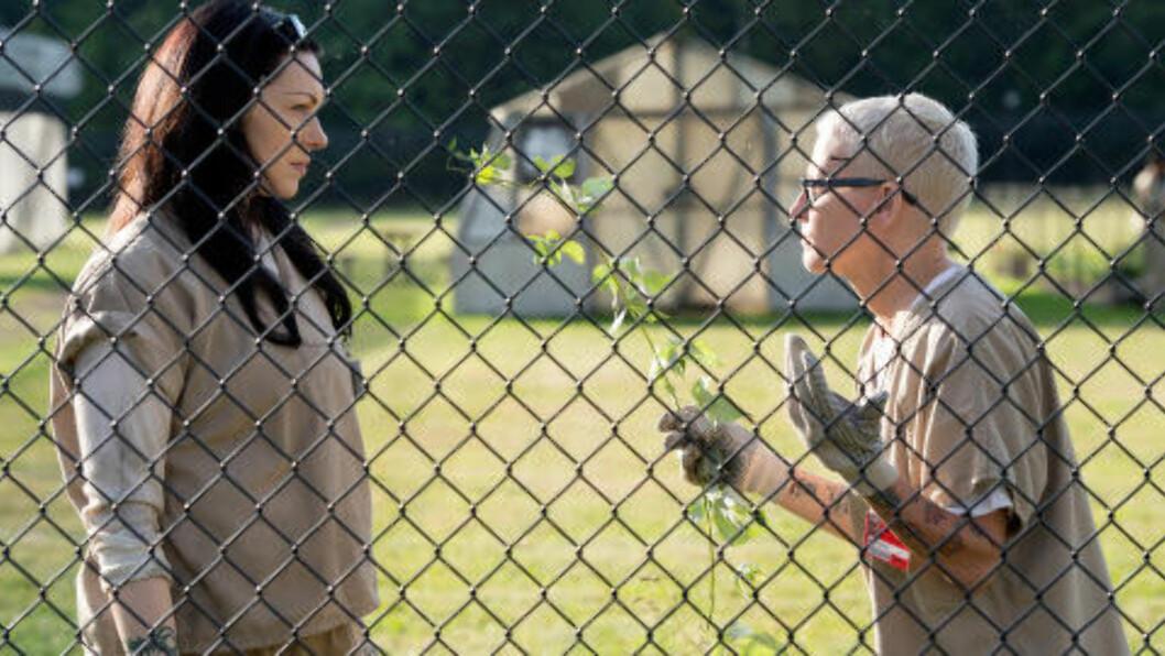 <strong>GJENSYN:</strong> Der andresesong hadde mindre av Laura Prepon og såvidt rakk å introdusere Lori Petty, kommer begge sterkere tilbake i årets sesong. Foto: Jojo Whilden/Netflix
