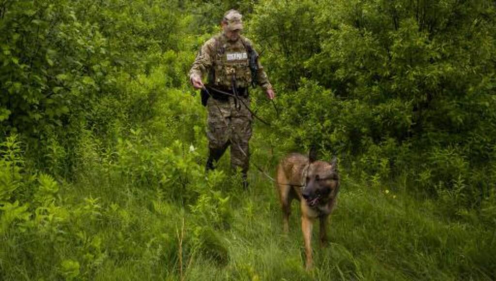 STORSTILT JAKT: Flere hundre politifolk leter etter Matt og Sweat i de store skogsområdene rundt grensa mellom USA og Canada. Foto: Eric Thayer / Getty Images / AFP / NTB Scanpix