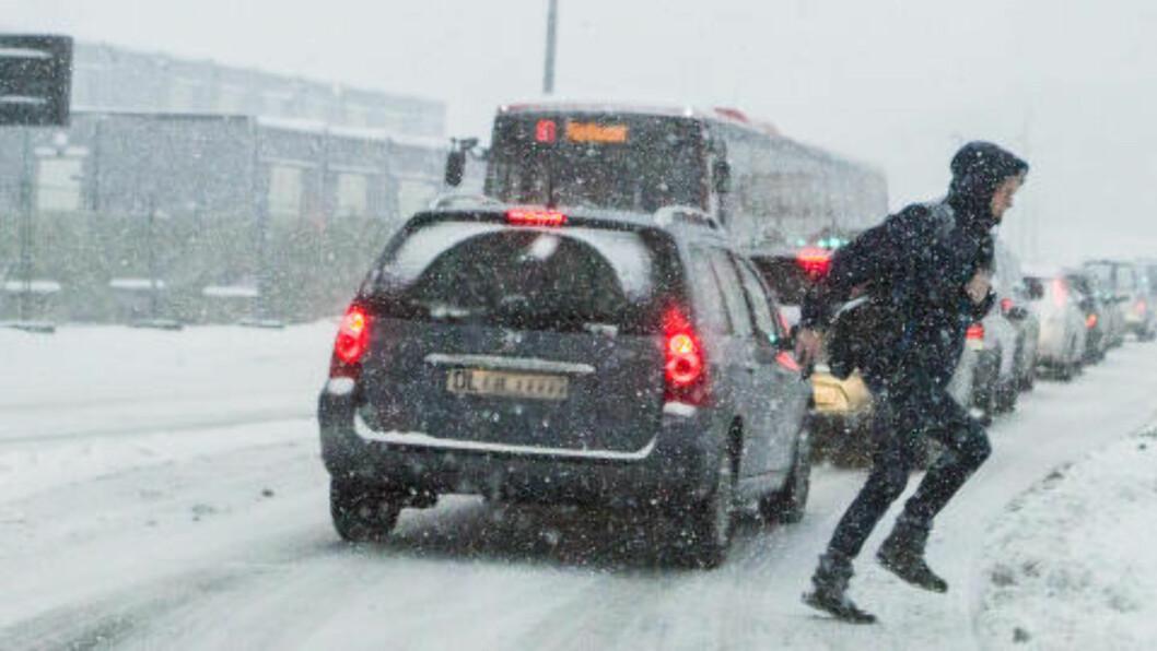 <strong> KAOS PÅ VEIENE:</strong>  Bilkø, buss og fotgjenger kjemper mot den våten snøen ved Operatunnelen i Oslo sentrum. Før klokka 08 i dag har Ruter innstilt all busstrafikk i Oslo og omegn - for første gang denne vinteren. FOTO: HALVOR NJERVE/DAGBLADET.