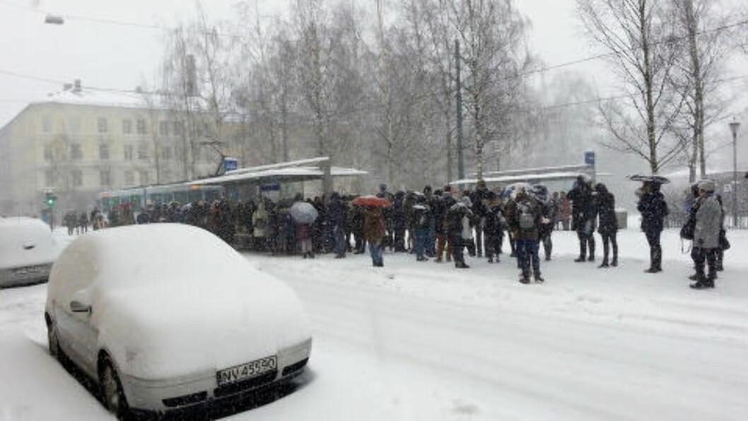 <strong>LANG KØ:</strong> Ruter har innstilt all busstrafikk i Oslo. Det forårsaket en trå start på dagen for mange. Foto: Odin Stavheim Aasen