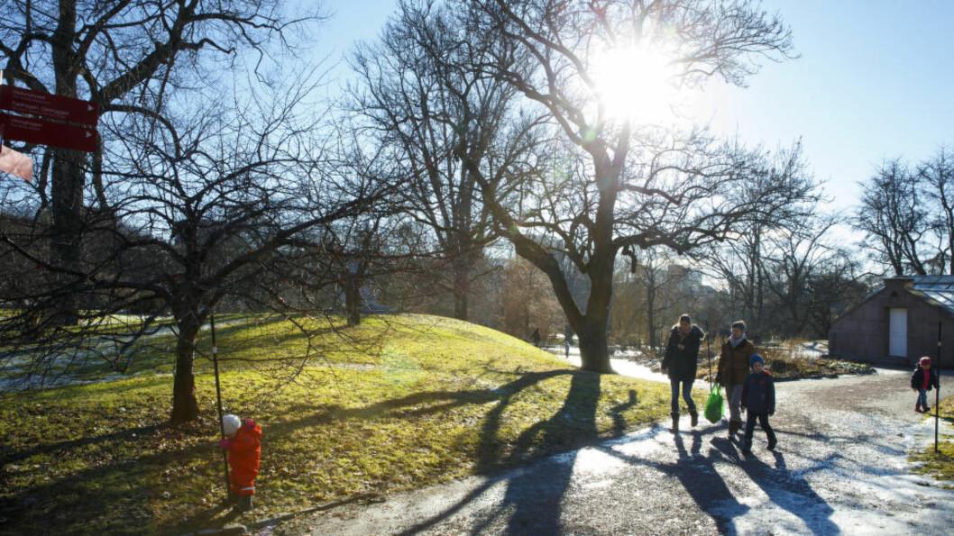 <strong>VÅR:</strong> Mye tyder på at våren har kommet for å bli i Sør-Norge. Meteorologisk institutts prognoser viser at det bolir oppholdsvær og sol hele neste uke.   Foto: Heiko Junge / NTB scanpix