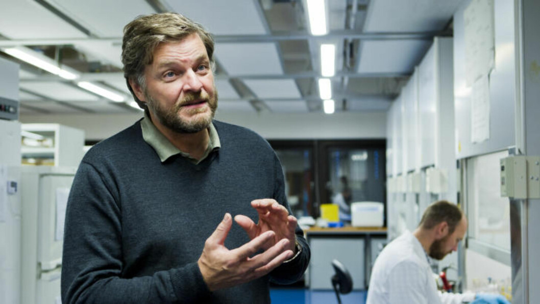 <strong>«LIGG UNNA»:</strong> Fagdirektør Steinar Madsen i Legemiddelverket advarer. Foto: Berit Roald / Scanpix