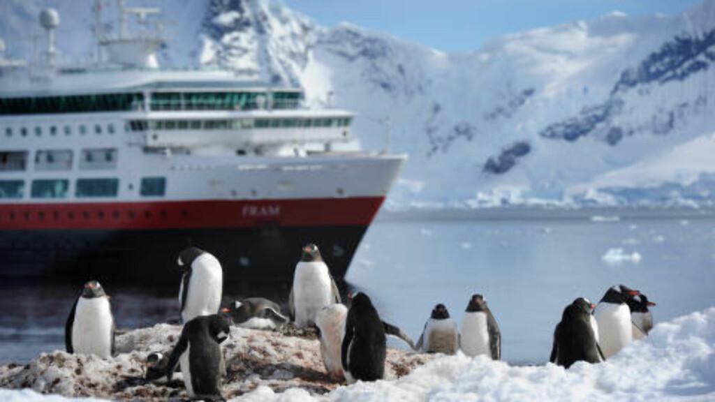 UT PÅ TUR: Antarktis er værutsatt, så skipets plan bestemmes av vær og vind. Noen dager kommer du i land flere ganger, andre dager er det ikke mulig å lande. På land venter pingvinene. Foto: TORILD MOLAND