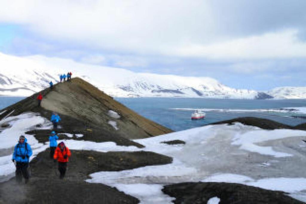 TROLSK: Deception Island på Sør-Shetlandsøyene er en aktiv vulkan med en hemmelig kaldera hvor askedekket snø ser ut som lavastein. Disse svarte og hvite øyene strekker seg 600 meter over havet, og er stedvis dekket av irrgrønn lava. Foto: TORILD MOLAND