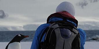 image: Du sitter og nyter utsikten i Antarktis når en av  av de lokale stopper opp for å slå av en prat