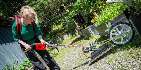 image: Slik fjerner du ugress i hagen