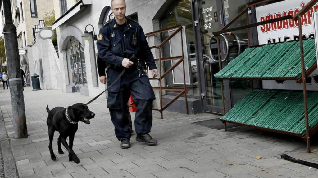 STOR RAZZIA: Politiet gjorde i dag søk med narkohund både i leiligheter og butikklokaler i forbindelse med massepågripelsen. Foto: ANITA ARNTZEN