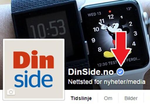 DETTE ER TRYGT: Se etter den blå haken for å få vite om Facebook-siden er verifisert. Foto: SKJERMDUMP