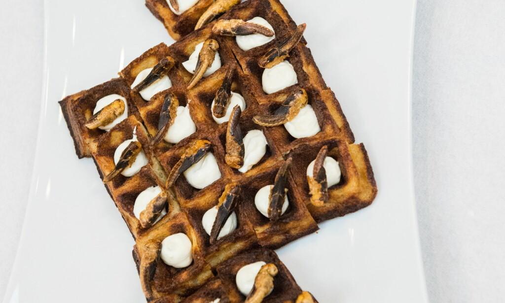VAFFEL: Potetvaffel med creme fraiche og siriss-greshopper, bakt med 20 prosent sirissmel. Foto: Endre Vellene / Dagbladet