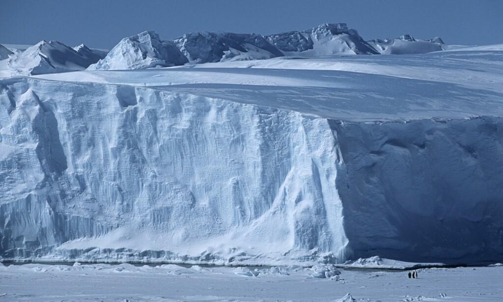 KAN KOLLAPSE: Den enorme ishylla Larsen C i Antarktis sprekker opp stadig mer. Nå frykter forskerne en fullstendig kollaps. Foto: NTB Scanpix