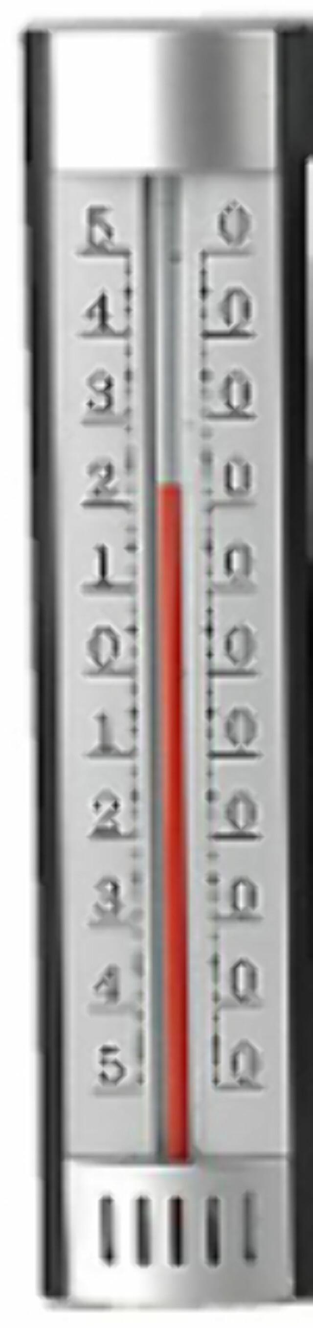BILLIG-VÆR  Mange vil sikkert klare seg godt med en vanlig termometer til 40 6956fe08996c1