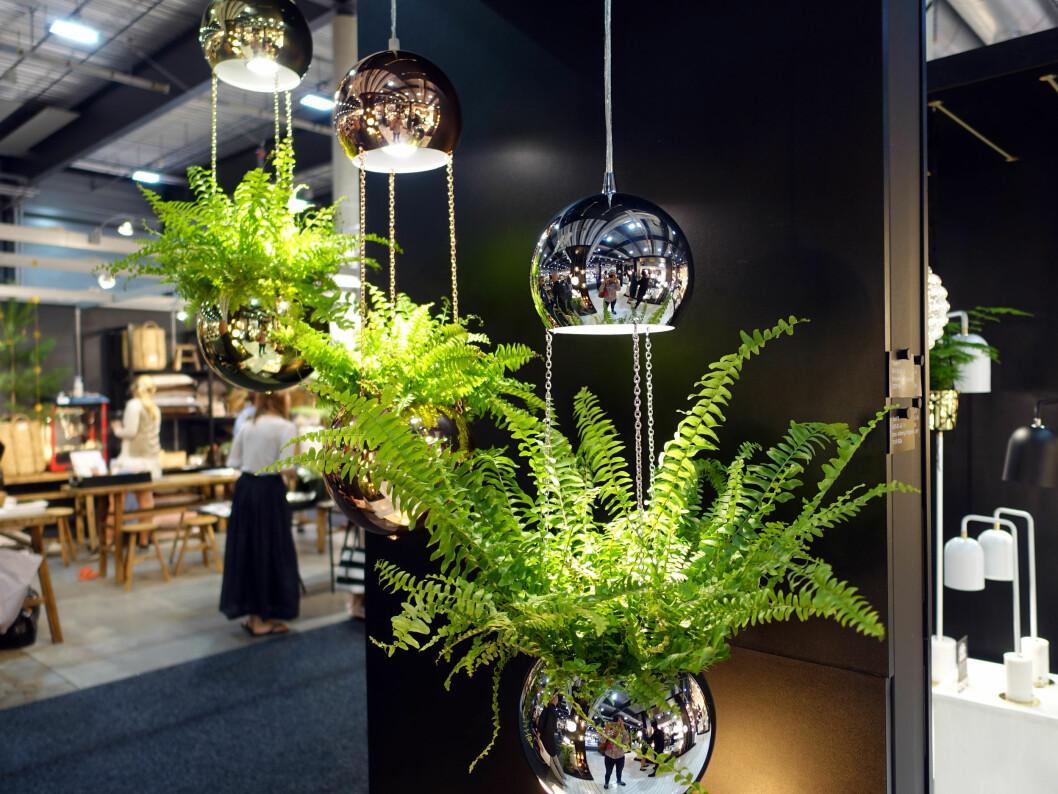 <strong><b>2-I-ETT:</strong></b> Lampe og blomsterampel i ett - i messing-, kobber- eller stål-utseende, fra Globen Lighting. Foto: KRISTIN SØRDAL