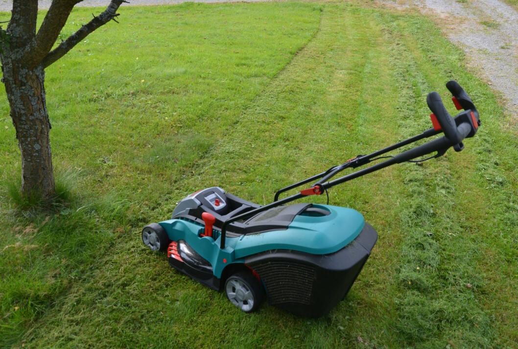 <b>BIOKLIPP? </b> Bruker du maskinen uten oppsamler finklippes det allerede klippede gresset. Klipper du ofte får du det man kaller bioklipp, men med langt gress blir det noe helt annet og du må fram med riva.  Foto: BRYNJULF BLIX