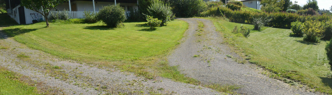 <strong><b>PLENEN:</strong> </B>Vi kom ikke i mål på en lading når gresset var vått. Foto: BRYNJULF BLIX